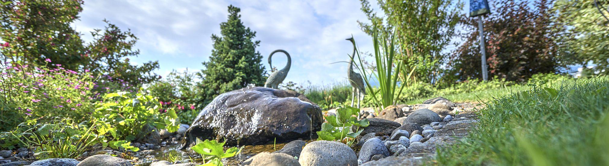 Amstutz Gartenbau AG, Gartenbau, Wasserspiel, Biotop