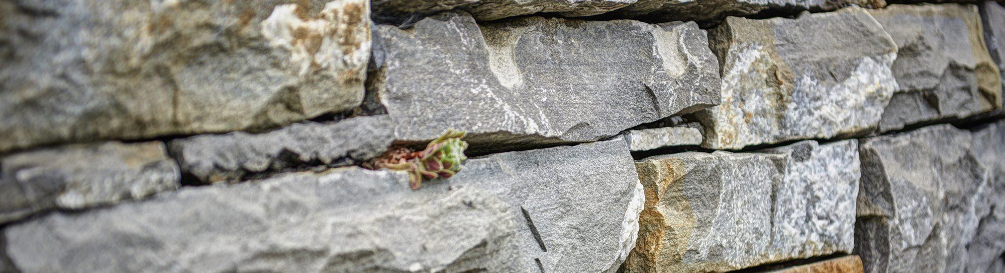 Amstutz Gartenbau AG, Mauern und Sichtschutz