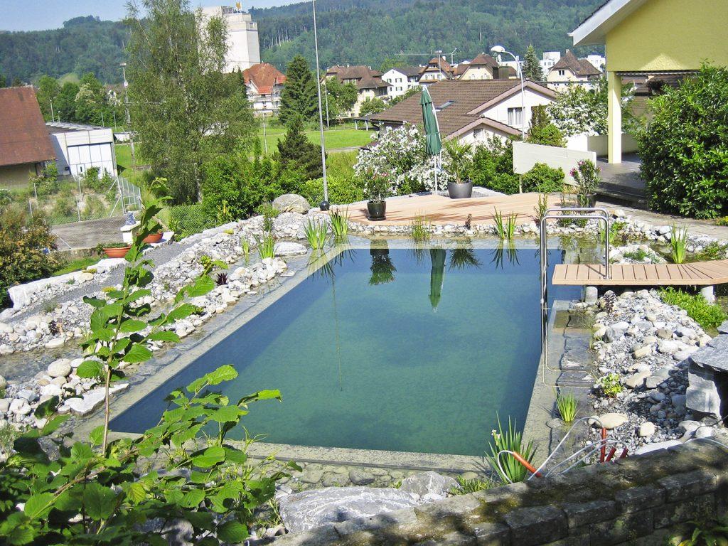 Amstutz Gartenbau AG, Biotope und Wasseranlagen, Schwimmteich