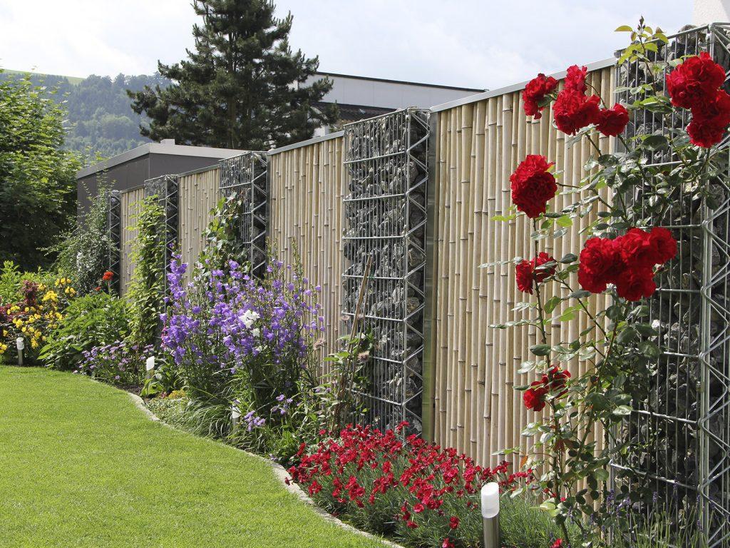 Amstutz Gartenbau AG, Sichtschutz, Bambus mit Schotterkoerben